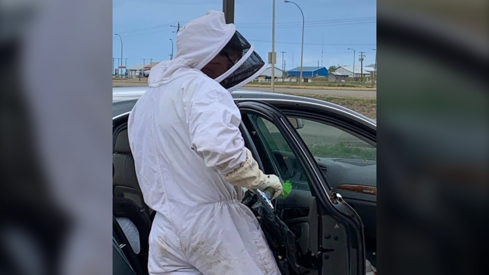 Alberta MLA Todd Loewen removed a swarm of bees from a traveller's car in Valleyview. (Courtesy: Todd Loewen)