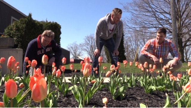 Brothers Jason, Stephen and Andrew Oud admire the tulip memorial garden in Vanastra, Ont. on Thursday, May 21, 2020.