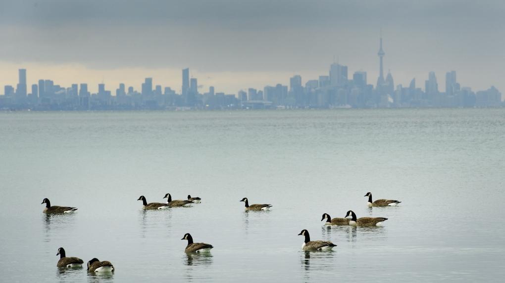 Toronto, skyline,
