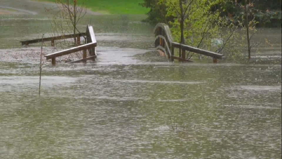 Rainfall caused flooding in Confederation Park, but officials said as a catchment area, that's supposed to happen.