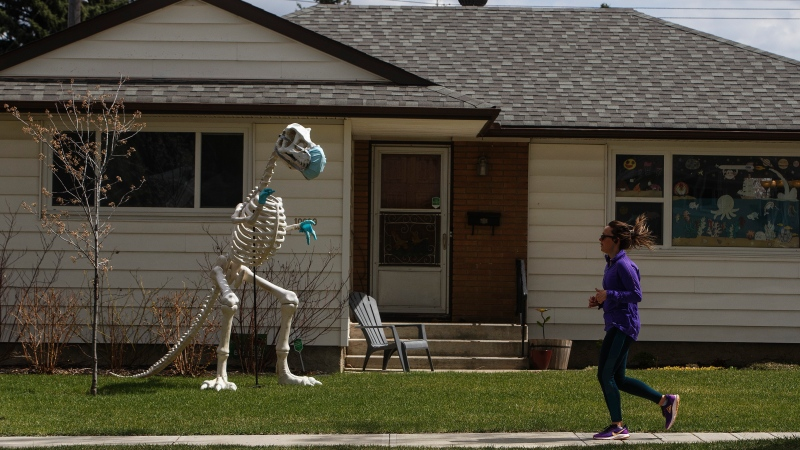 A runner jogs past a dinosaur wearing a mask and gloves, during the COVID-19 pandemic, in Edmonton on Saturday, May 9, 2020. THE CANADIAN PRESS/Jason Franson