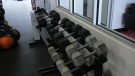 Weights at a gym (Marc Smith / CTV News Regina)