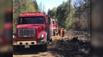 Twenty-two fire departments on scene of a large forest fire in Chester Grant, N.S. on Saturday May 23. (CTV Atlantic/Allan April)