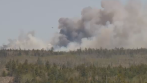At around 12:20 p.m., Halifax Fire crews were called to a wildfire off of Highway 107 in Porters Lake, N.S., near West Porters Lake Road.