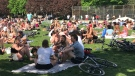 Large crowds seen at Trinity Bellwoods Park on Saturday. (Beatrice Vaisman)