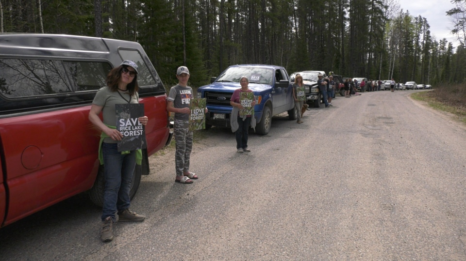 Residents of the Rice Lake community in Iroquois Falls line Rice Lake Road today to send a message to the Ministry of Natural Resources and Forestry.  They love the 100-year old Jack Pine forest and they want to save it. May 24/2020 (Lydia Chubak/CTV Northern Ontario)