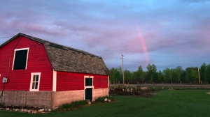 A beautiful rainbow kind of evening. Photo by Marylyn Fisher.