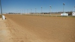 Horse racing resumes in Manitoba