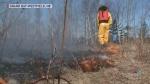 Burn ban in effect across Maritimes