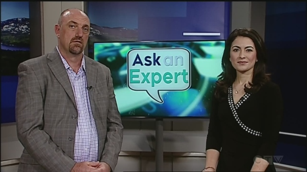Ask an expert: how can I tell if my pet has hip dysplasia.
