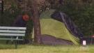Victoria shelters reach maximum capacity