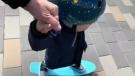 Sawatsky Sign-Off- Skating and Signing