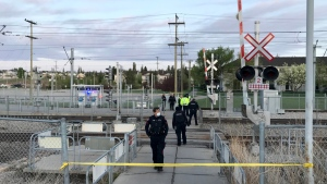 A pedestrian was killed early Tuesday after being struck by an LRT at the Somerset-Bridlewood station.