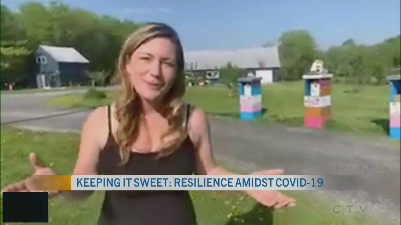 CTV Morning Live Gee May 26