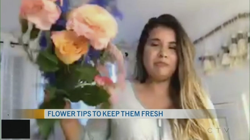 CTV Morning Live Carbajal May 26