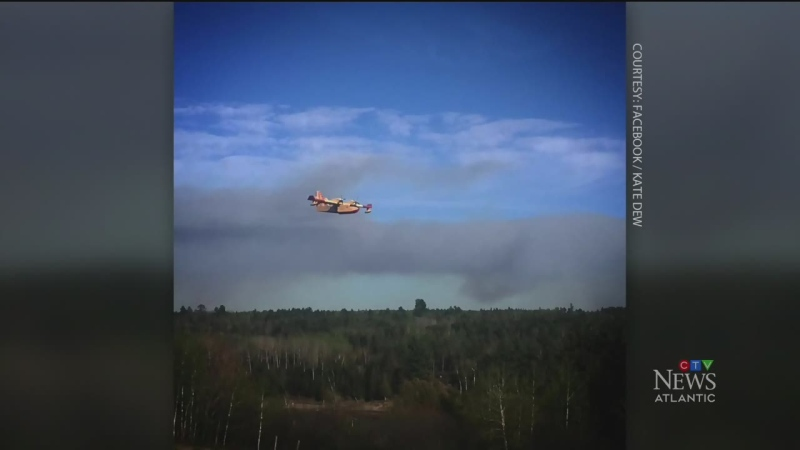 Fire destroys 350 hectares in N.B.