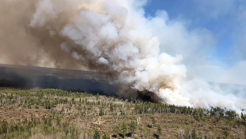 A significant wildfire is seen in Nova Scotia's Kings County, near Springfield, on May 25, 2020. (@NSLandsForestry/Twitter)