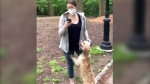 Woman calls police on black man over dog leash arg