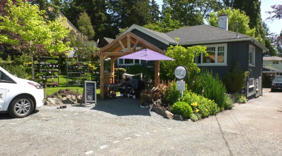 Colleen O'Farrell's flower stand is pictured outside her house in the Gorge area of Saanich: May 26, 2020 (CTV News)