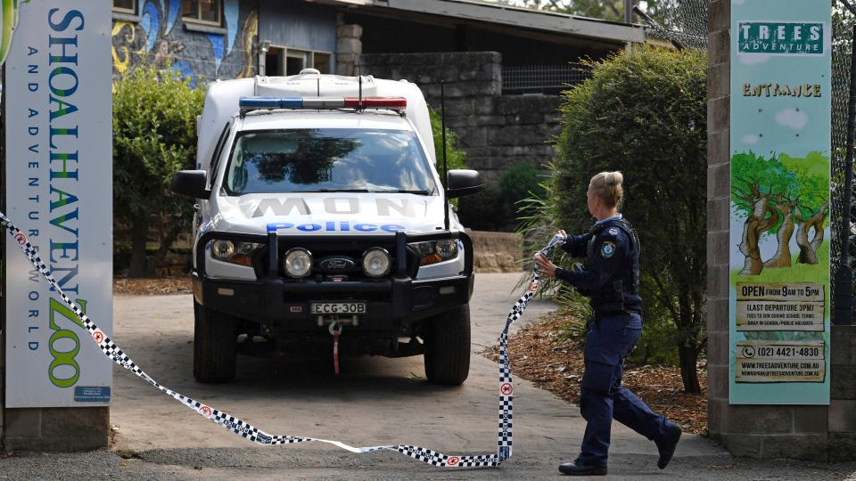 Police work at the Shoalhaven Zoo in Nowra, Australia, Friday, May, 29, 2020, where an animal keeper has been critically injured when she was mauled by two lions. (Dean Lewins/AAP Image via AP)