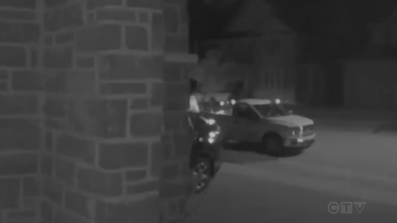 yard theft Waterloo