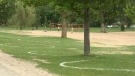 The City of Ottawa has painted physical distancing circles at Mooney's Bay.