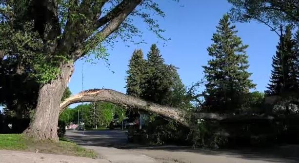 Saskatoon Wind June 1st