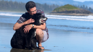 Terry Fong wrote a book about his relationship with beloved border collie cross, Princeton. The dog passed away at 18 years old after surviving three bouts of cancer. (Photo provided.)