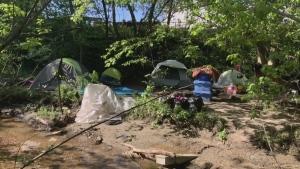 Milligan's Pond tents