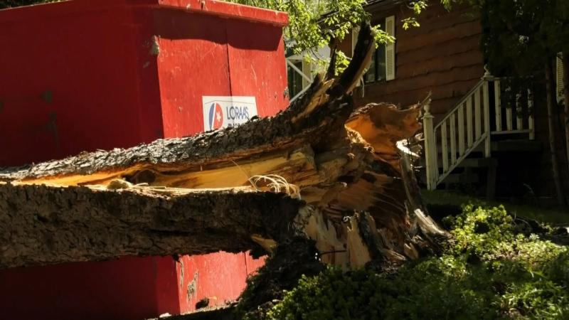 Wind causes damage across province