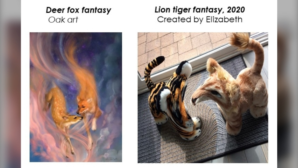 Lion tiger fantasy