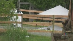 Police investigate 2 deaths on Salt Spring Island