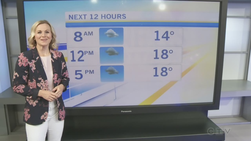 CTV Morning Live Weather June 03