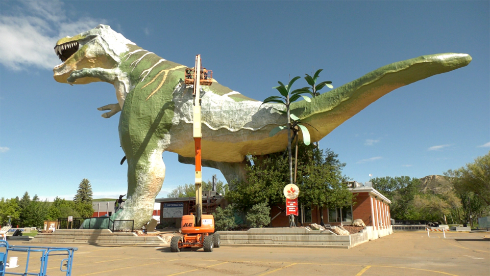 Drumheller Tyrannosaurus rex, the world's largest dinosaur, is getting a paint job that will cost $300,000 to complete.