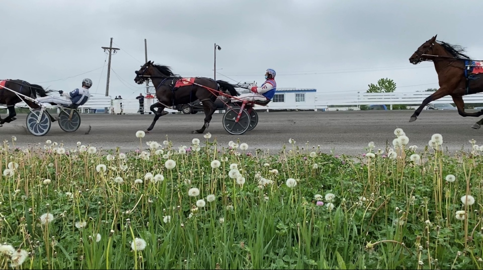 Qualifying races at Rideau Carleton Raceway. Ottawa, ON. June 3, 2020. (Tyler Fleming / CTV Ottawa)