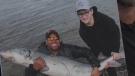 Blair Murphy caught this massive sturgeon, weighing over 170 pounds (77 kilograms) from the Oldman River in southern Alberta.