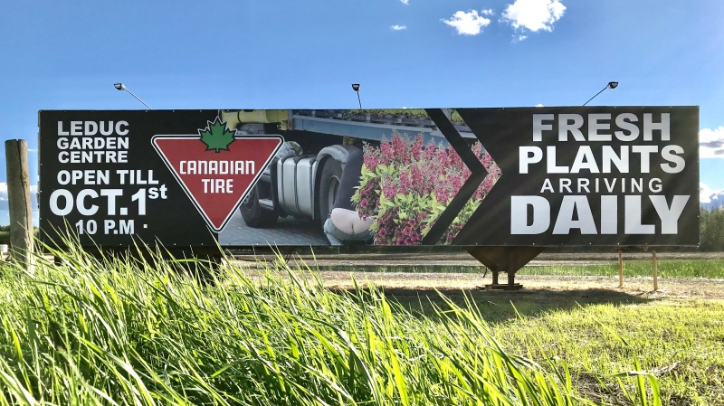 A 'cheeky' Canadian Tire billboard near Leduc. June 3, 2020. (CTV News Edmonton)