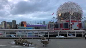 """A night out with the family"" at Science World. (Dkenz Yap photo)"
