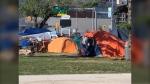 Homeless camp by the Disraeli Freeway. (Source: Jamie Dowsett/CTV Winnipeg)