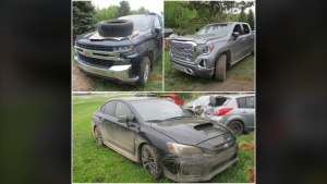 These are among the six stolen vehicles recovered by Morinville RCMP (RCMP)