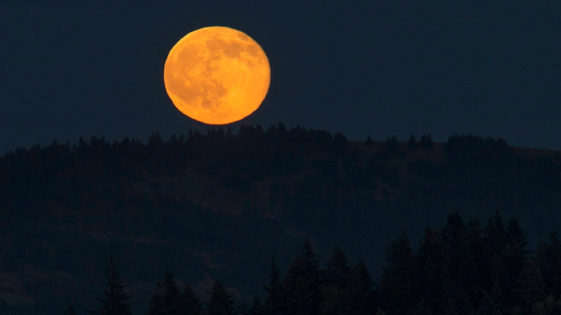 A Strawberry Moon rises east of Eugene, Ore. as seen from Skinner Butte in Eugene, Ore. June 20, 2016. (Chris Pietsch/The Register-Guard via AP)