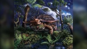Nodosaur illustration by Julius Csotonyi (Royal Tyrrell Museum of Palaeontology)