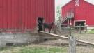 family farm covid
