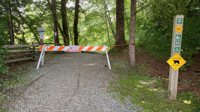 A trail in Maple Ridge has been closed temporarily due to a bear sighting. (Metro Vancouver Regional Parks)