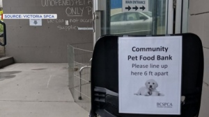The BC SPCA is offering free pet food for struggling pet owners during the COVID-19 pandemic at several of its Vancouver Island branches: (SPCA)