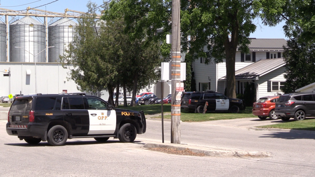 OPP work at the scene of a firearms-related call in Hensall, Ont. on Monday, June 15, 2020. (Scott Miller / CTV London)