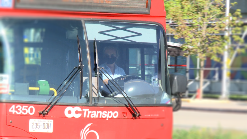 An OC Transpo bus operator wears a mask while driving. Temporary barriers have been installed on the operator cabs of OC Transpo buses to support the safe reintroduction of front door boarding.
