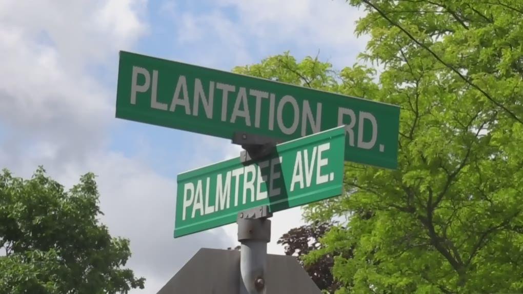 Artist puts support behind 'Plantation Road' chang