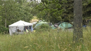 The City of Victoria said it anticipates it will be able to move homeless people willingly from the Garry oak areas of the park. (CTV News)