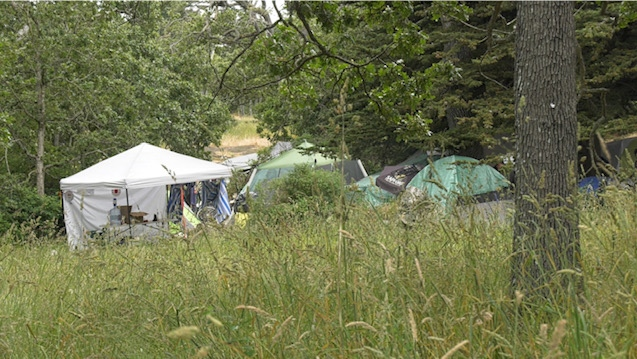 Tents set up at Beacon Hill Park are shown: June 15, 2020 (CTV News)